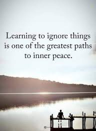 Peaceful Quotes Best Inner Peace Quotes Learning To Ignore Things Is One Of The Greatest