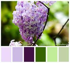 Purple Green Color Palettes Purple Isas Place