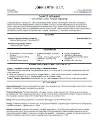 Perfect Professional Resumes Resume Format Professional Experience Best For It Letsdeliver Co