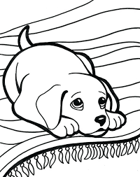 Small Picture Pretty Coloring Pages Printable For Adults A Kids vonsurroquen