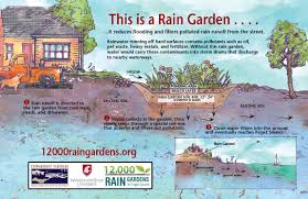 Small Picture Resource Library 12000 Rain Gardens
