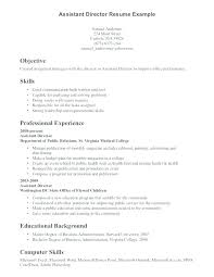 Computer Skills On Resume Sample Cool Examples For Skills On A Resume Amere