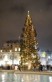 The Trafalgar Square Christmas tree in 2008