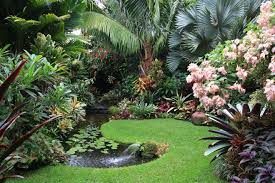 Small Picture Simple Tropical Garden Ideas Queensland Design And Decorating