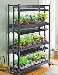 indoor kitchen garden. Grow An Indoor Vegetable Garden And Enjoy Your Own Fresh Organic Vegetables. What To Know Kitchen N