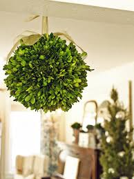 Preserving Tree Branches For Decoration How To Make A Boxwood Kissing Ball Hgtv
