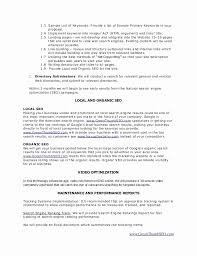 Sample Seo Proposal Beautiful System Proposal Template Proposal ...
