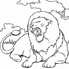 Image Coloriage Lion Duilawyerlosangeles