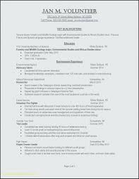 List Of Job Skills For Resumes Resume Skills To List In A Resume