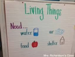 What Do Scientists Do Anchor Chart 9 Must Make Anchor Charts For Science Mrs Richardsons Class