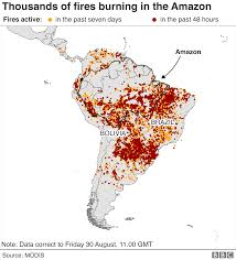 Vines, palm trees, orchids, ferns. The Amazon In Brazil Is On Fire How Bad Is It Bbc News