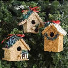 edible mini birdhouses