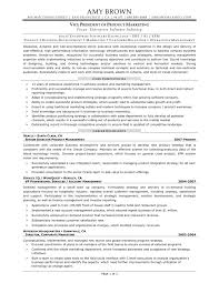 Vp Of Sales Resume Examples Resume Template Vice President RESUME 16