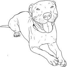 pitbull dog face drawing. Contemporary Drawing How To Draw A Pitbull Face  Google Search And Pitbull Dog Face Drawing