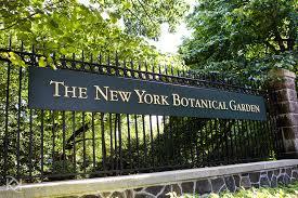 new york botanical garden for romantic nature