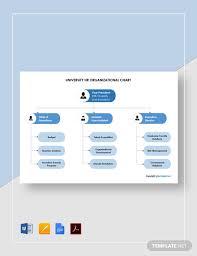 Hr Organizational Chart Sample Free University Human Resources Organizational Chart