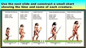 Evolution Of Man Chart Dean R Berry The Earliest Humans Human Evolution From