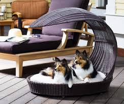 luxury pet furniture. outdoor dog bed chaise lounger luxury pet furniture m
