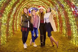 Silverton Oregon Garden Lights A Million Lights Illuminate Christmas In The Garden At