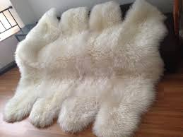 awesome architecture genuine sheepskin rug with shameonwinndixie com throughout plan 10