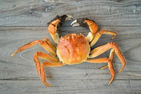 Crab Vending Machine Classy Customers Rush To Hairy Crab Vending Machine Food The Jakarta Post