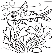 Small Picture Seaweed Coloring Pages GetColoringPagescom