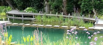 natural swimming pools diy pool kit liners s
