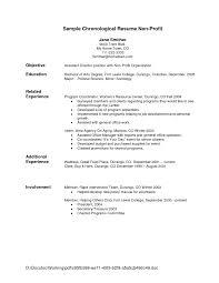 Chronological Resume Templates Resume Format