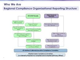 Medical Group Practice Organizational Chart Medical Group Compliance Auditing And Monitoring