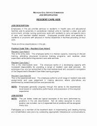 Sample Resume Of Cook Inspirational Essay On The Importance Of
