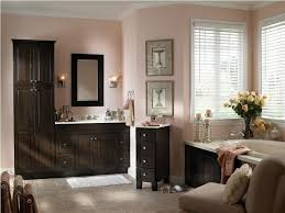 Bathroom Cabinet Tower Tower Cabinets Bath Stylish Dark Shelves And Black Bathroom