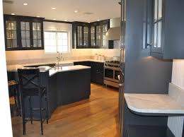 Brilliant Dark Kitchen Cabinets Colors Marvelous Design Of The Grey To Ideas