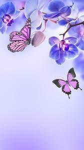Orchid wallpaper, Butterfly wallpaper ...