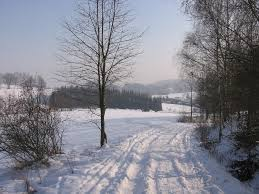 Image result for bad things about winter season