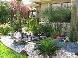 Small Picture South Florida Landscape Design Miss Fancy Plants Landscape