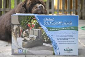 drinkwell outdoor dog fountain