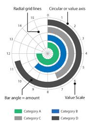 Excel Radial Bar Chart Radial Bar Charts Learn About This Chart And Tools To