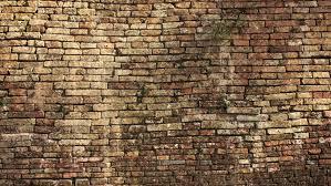 old brick wall texture стоковые видео