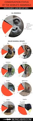 Chart Endangered Mammals