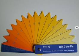 Egg Yolk Colour Chart Influencing Egg Yolk Color