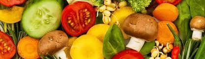 Master Of Nutrition Science Atlantic International University