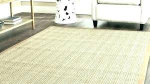 outdoor rug sisal spotlight home depot rugs look 8 org 9x12