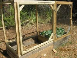 how to keep squirrels out of garden. Raised Bed Ready For Wire To Keep The Squirrels Out Of Garden How