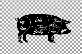 Butcher Diagram Clip Art Digital Pig Chart Pork Cuts Diagr
