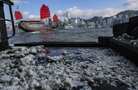questions over two day delay on notice of palm oil spill that left questions over two day delay on notice of palm oil spill that left 11 hong kong beaches closed young post south morning post