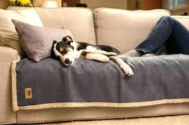 top furniture covers sofas. Dog Cover For Couch Sofa Top Best Blanket The Pet . Furniture Covers Sofas