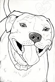 pitbull dog face drawing. Contemporary Drawing Image Result For How To Draw A Pitbull Face Inside Pitbull Dog Face Drawing L