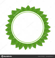 round green frame with leaves vector