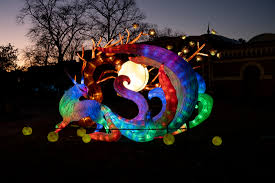 China Light China Light Festival Cologne Zoo