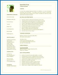One Page Resume Template Word Free Resume Template 24 Page Word Images Doc Word Free Professional Online 10